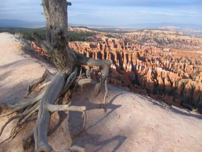bryce canyon vue utah