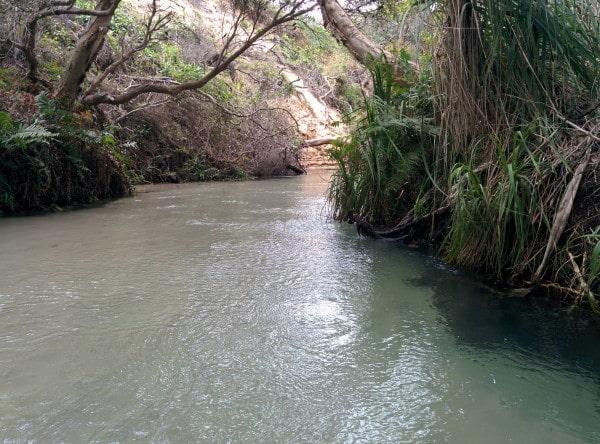 Fraser river australie