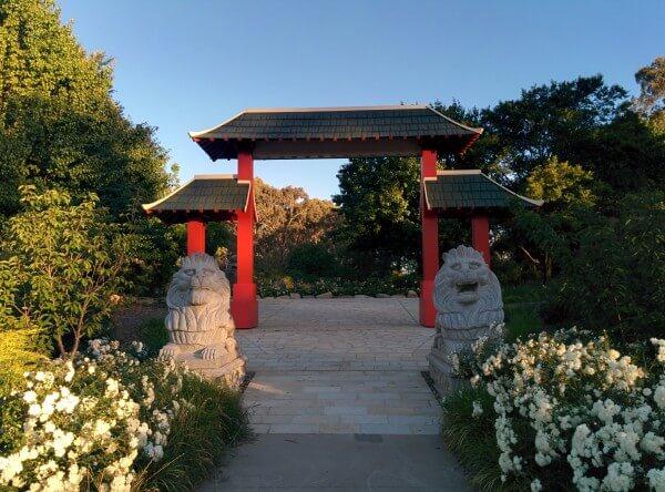 Jardin Japonais Young